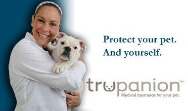 Why Trupanion Pet Insurance?