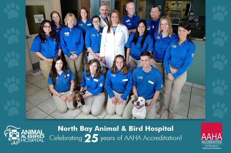 North Bay Animal & Bird Hospital Celebrates 25 Years of AAHA Accreditation