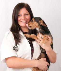 Tampa Bay Animal Hospitals | Tampa, FL