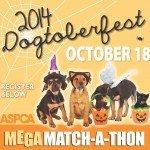 Dogtoberfest Tampa 2014