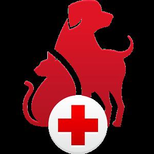 PetFirst App | Tampa Bay Animal Hospitals