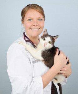 Dr. Kelleen Madill | Tampa Bay Animal Hospitals